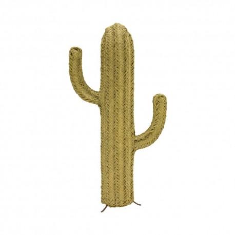 Cactus esparto mediano
