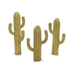 Cactus esparto grande