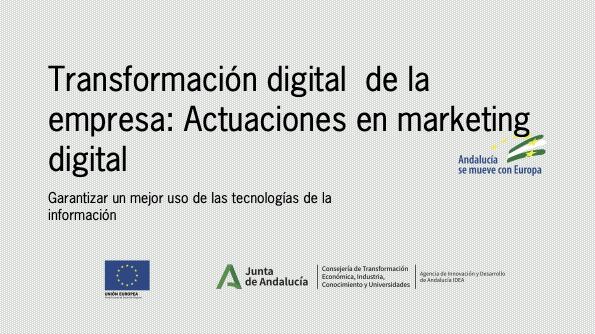Placa Conely transformación digital de la empresa: Actuaciones en marketing digital