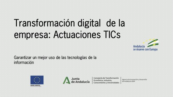 Placa Conely transformación digital de la empresa: Actuaciones TICs